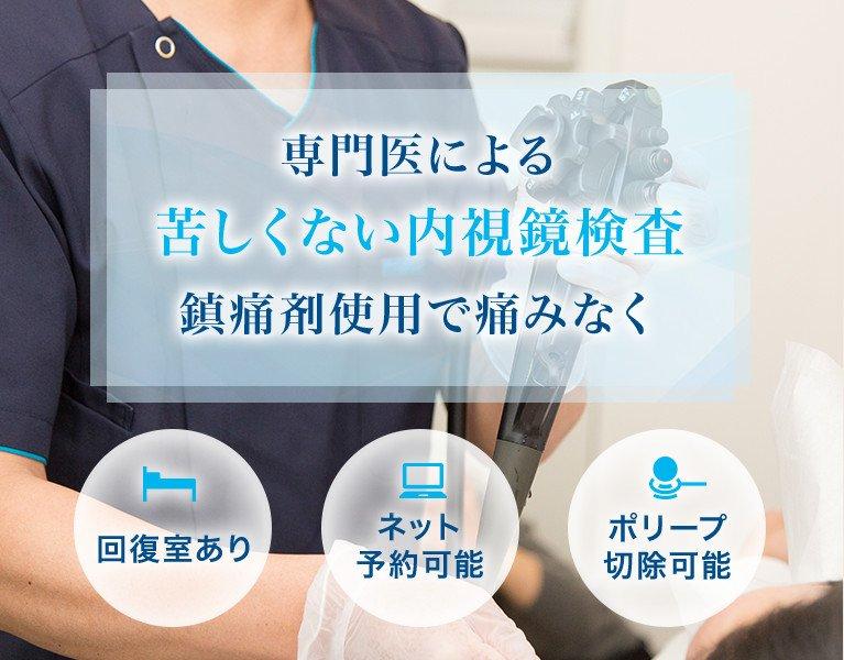 専門医による苦しくない内視鏡検査鎮痛剤使用で痛みなく 回復室あり ネット予約可能 ポリープ切除可能